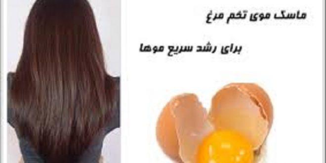 ماسک موی تخم مرغ برای رشد بیشتر ارایشی بیست