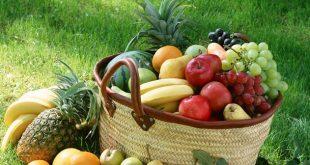 میوه های درمانی ارایشی ۲۰